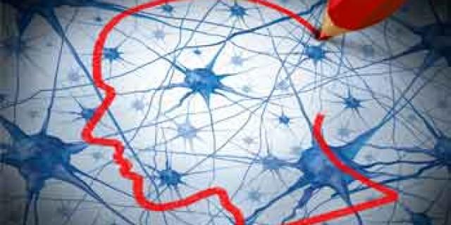 Chiropractic Neurology